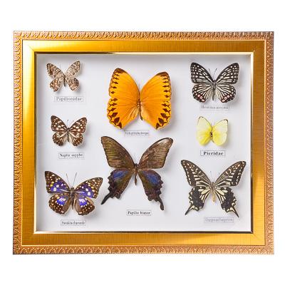 Панно с бабочками поэтапно