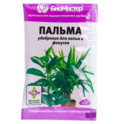 Удобрение для пальмы в домашних условиях