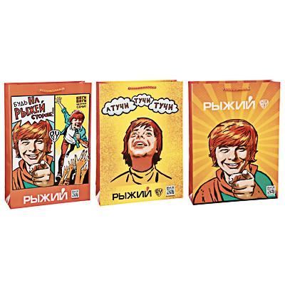 Пакет подарочный, бумага, 25х36х8см, 3 дизайна, арт.2 - фото товара