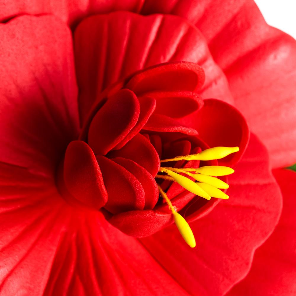Лилия декоративная для пруда ПВХ, 10см, 12 цветов