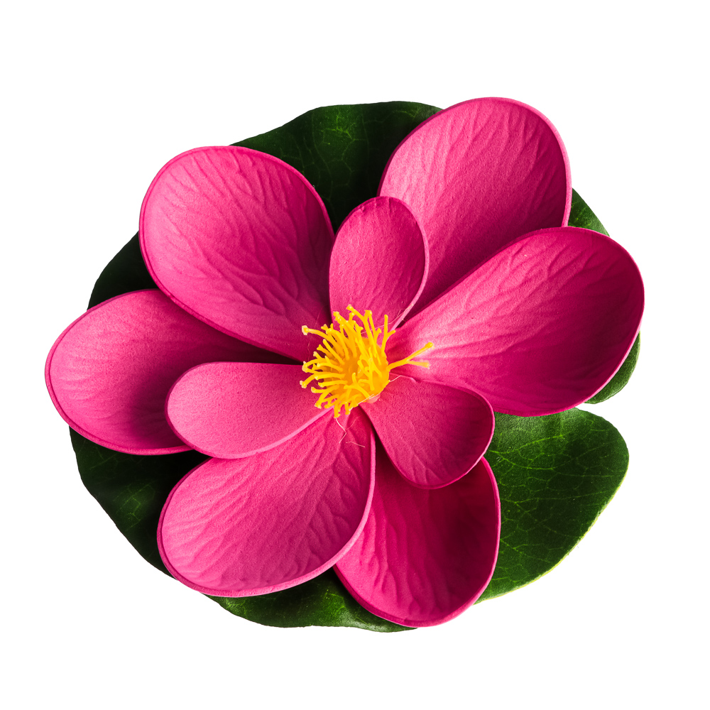 Лилия декоративная для пруда ПВХ, 15см, 12 цветов