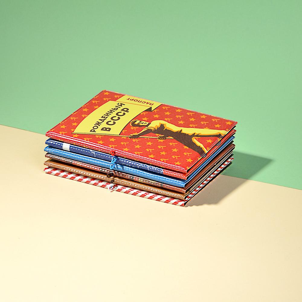 Обложка для паспорта с удерж.резинкой, с отд. для вод.удост, ПВХ, 13,7х9,6х0,4см, 2015-7, Дизайн GC