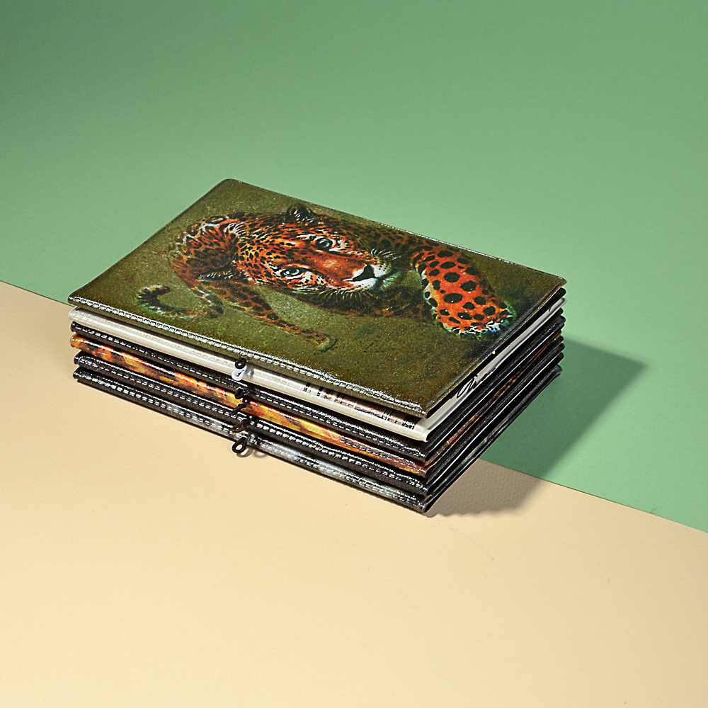 Обложка для паспорта с удерж.резинкой, с отд. для вод.удост, ПВХ, 13,7х9,6х0,4см, 2015-9, Дизайн GC