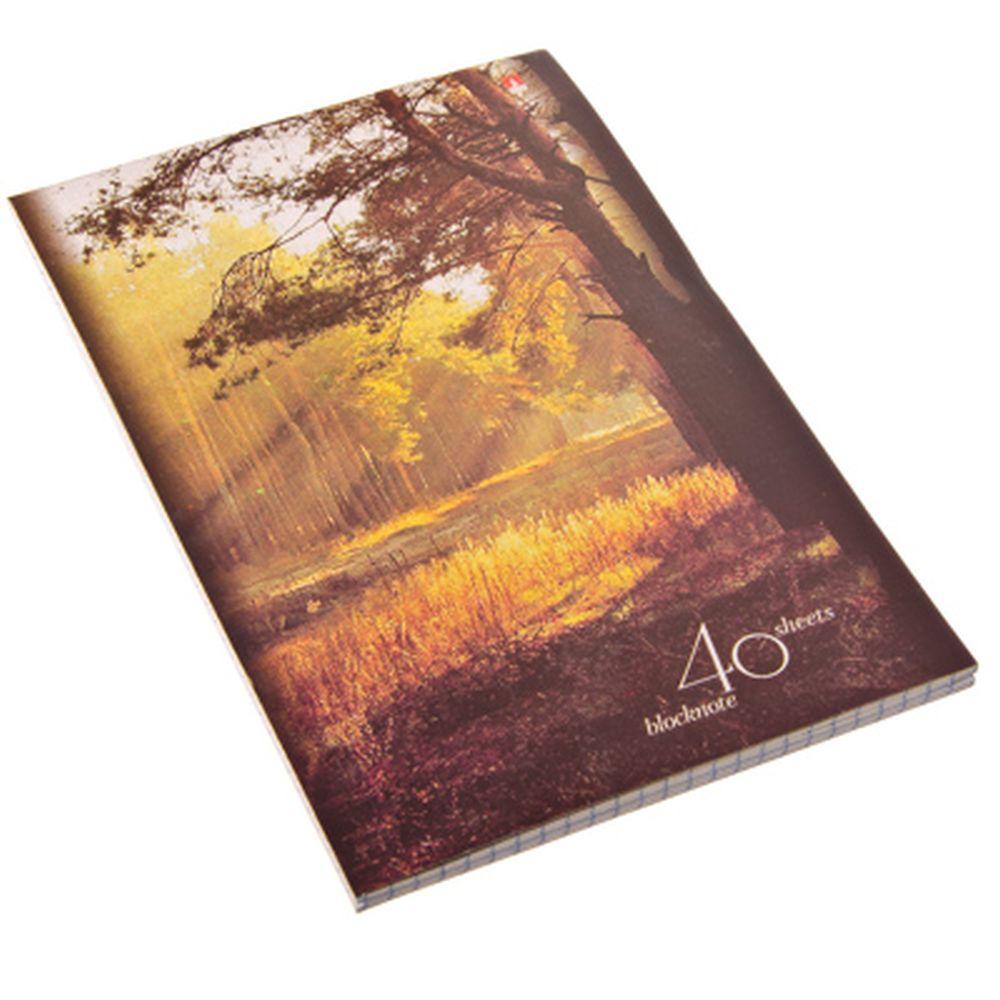 "Блокнот 40 л., А5, клетка, сшивка, картон.обл. Альт, ""Природа"", 4 дизайна, арт.30-40-499Д"