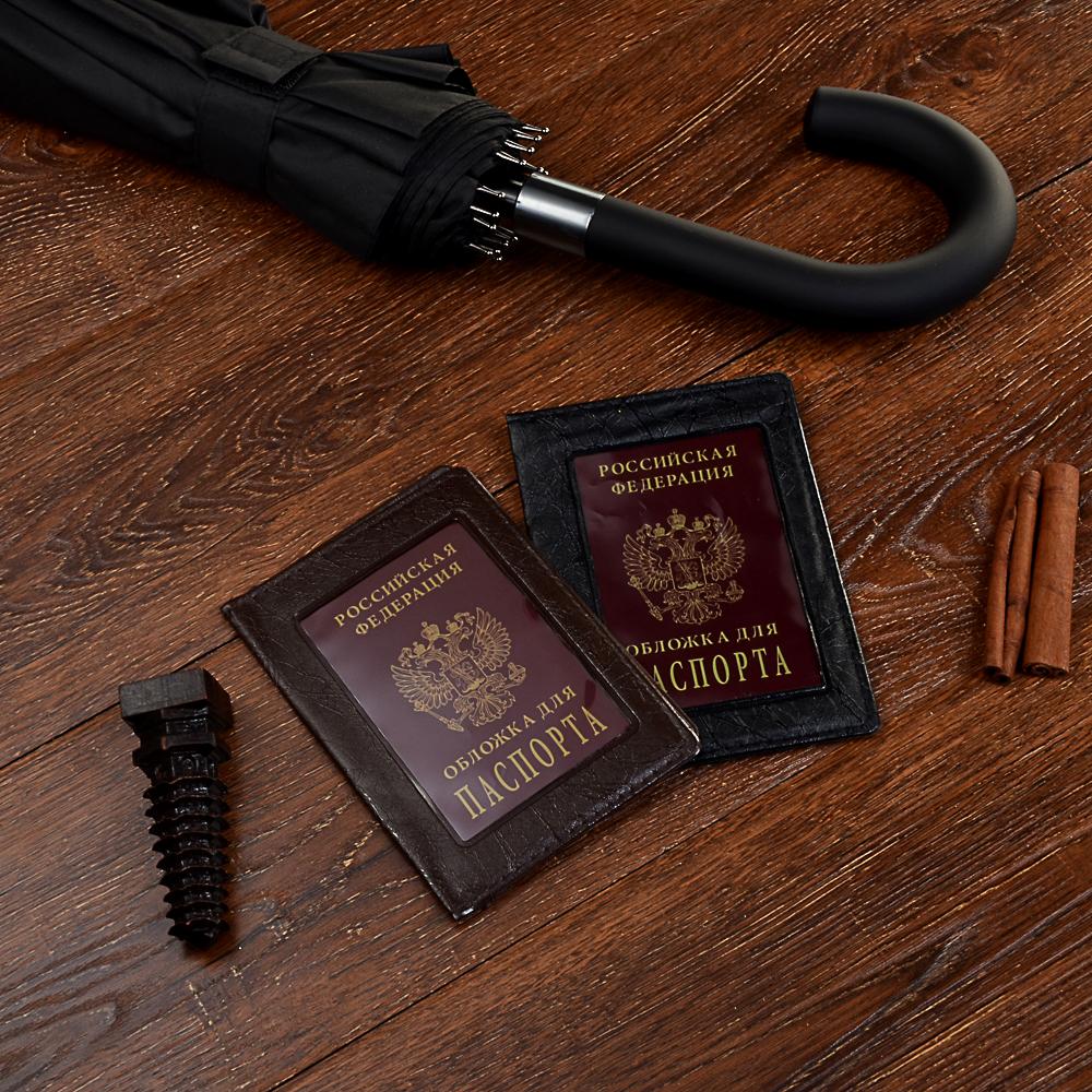 Обложка для паспорта с окном, ПВХ, 10х14см, 2 цвета