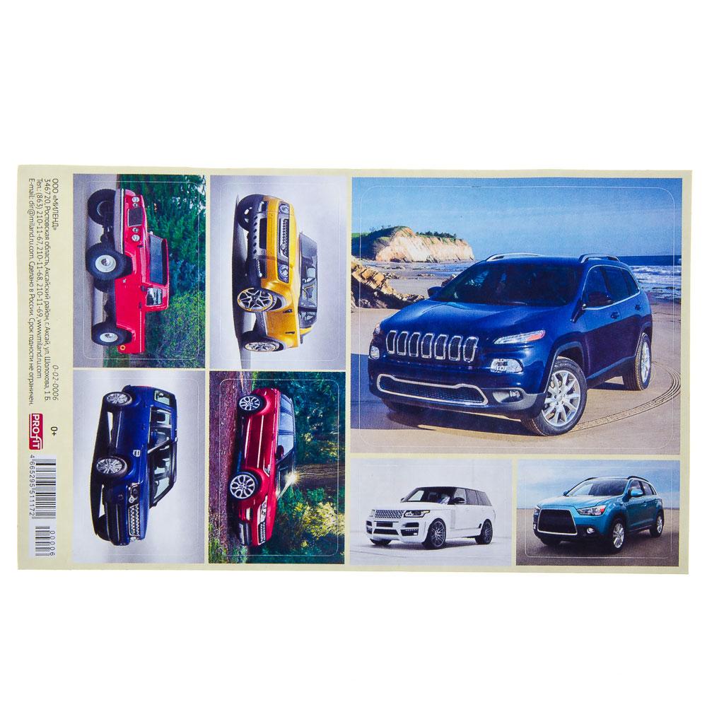 Наклейка 15,3x9,2см, бумага, ассорти 6 дизайнов, арт.0-02-0013/0-02-0006