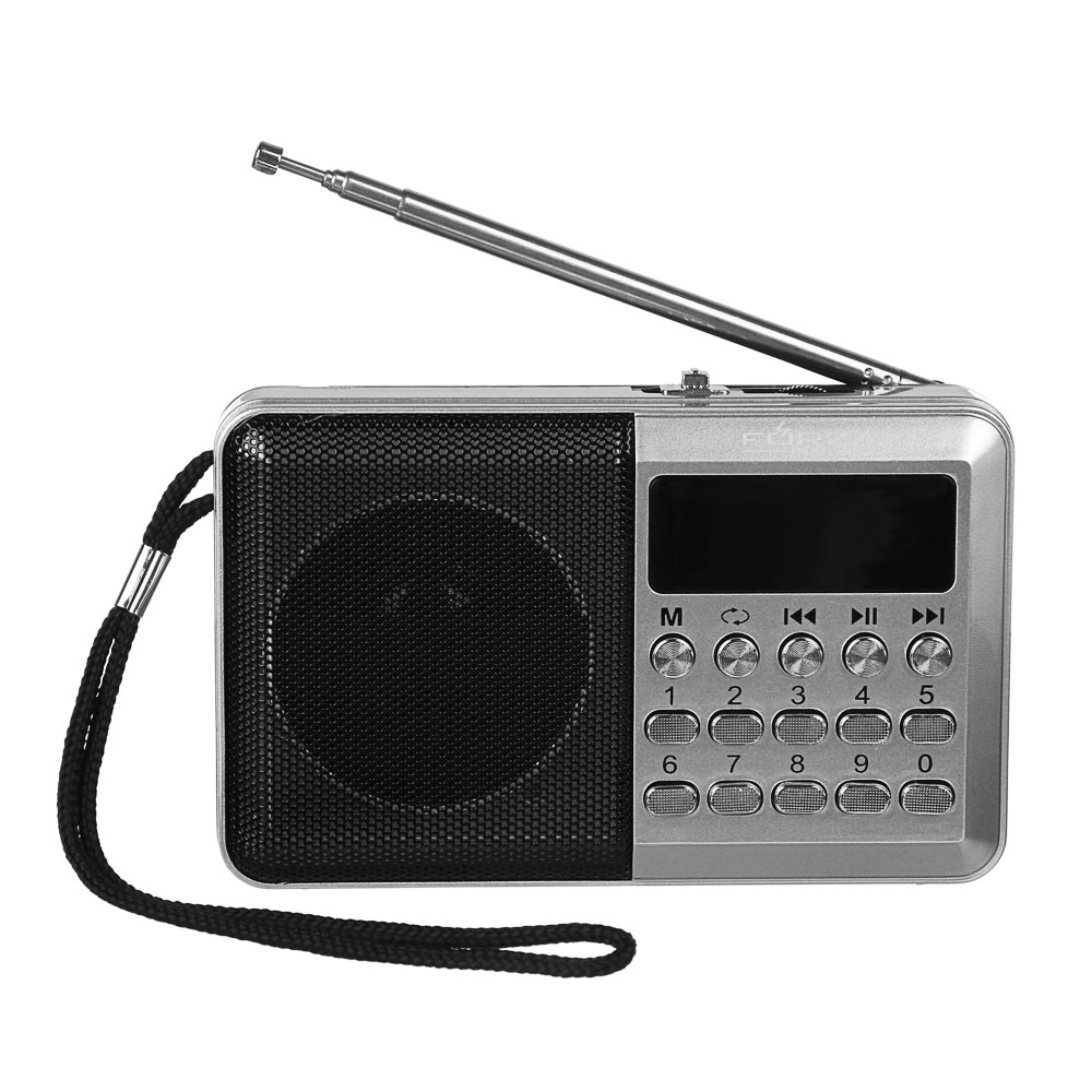 Радиоприемник FORZA переносной, аккумулят., USB, слот micro-SD, FM 87,5-108 МГц