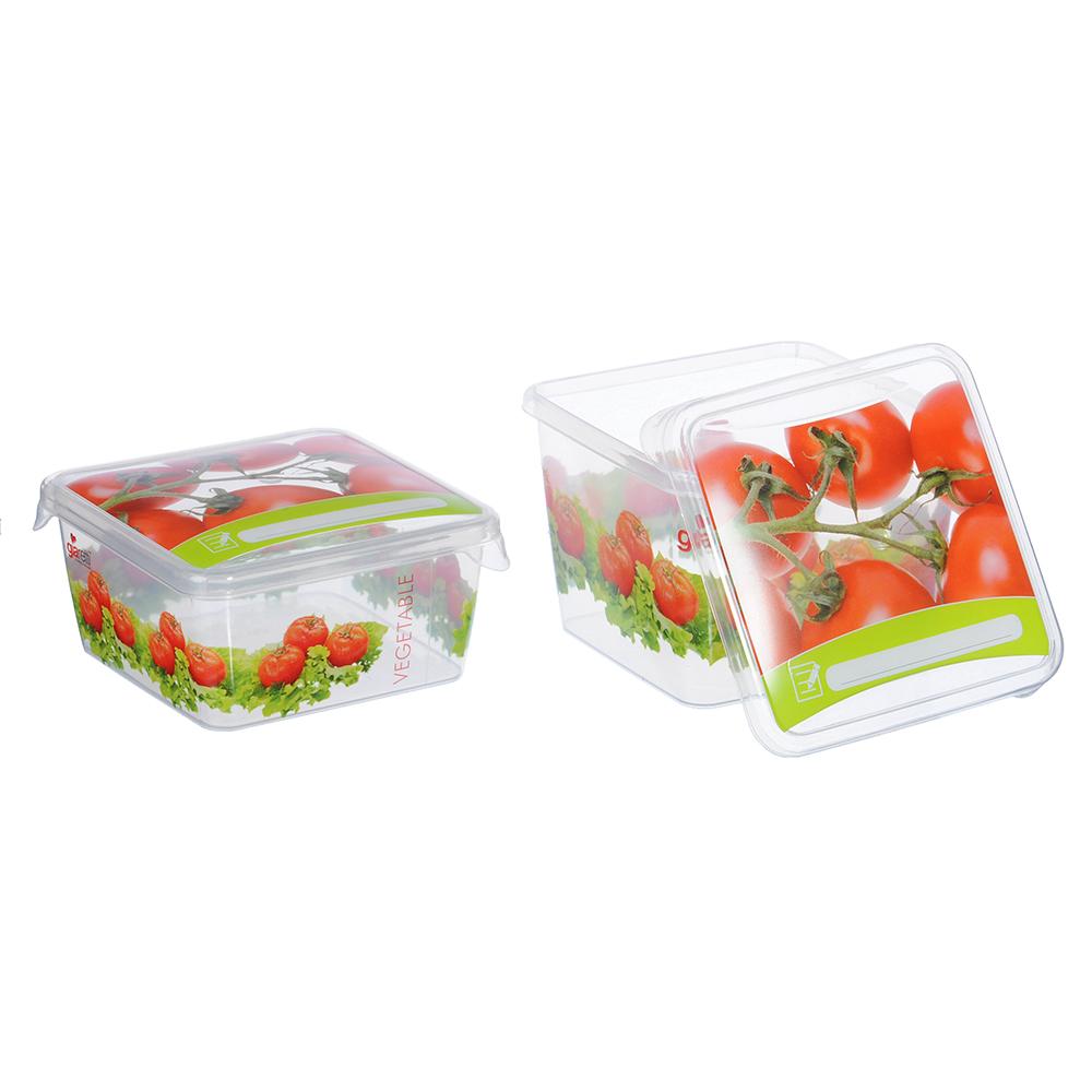 Набор пищевых контейнеров 2 шт (0,45 л, 0,75 л) Браво, 3 дизайна