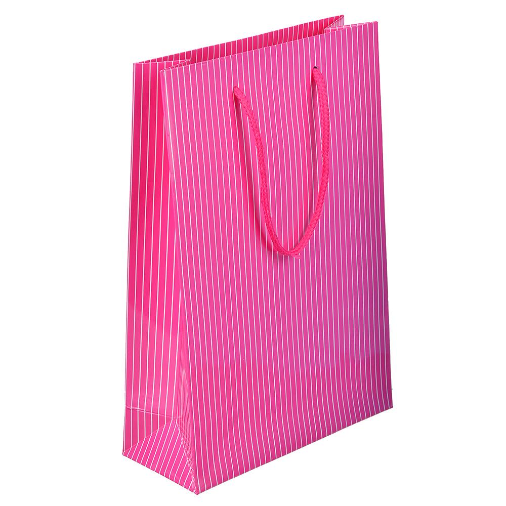 Пакет подарочный, высококачественная бумага, 17,3х25,5х7 см, однотонный в полоску, 5 цветов