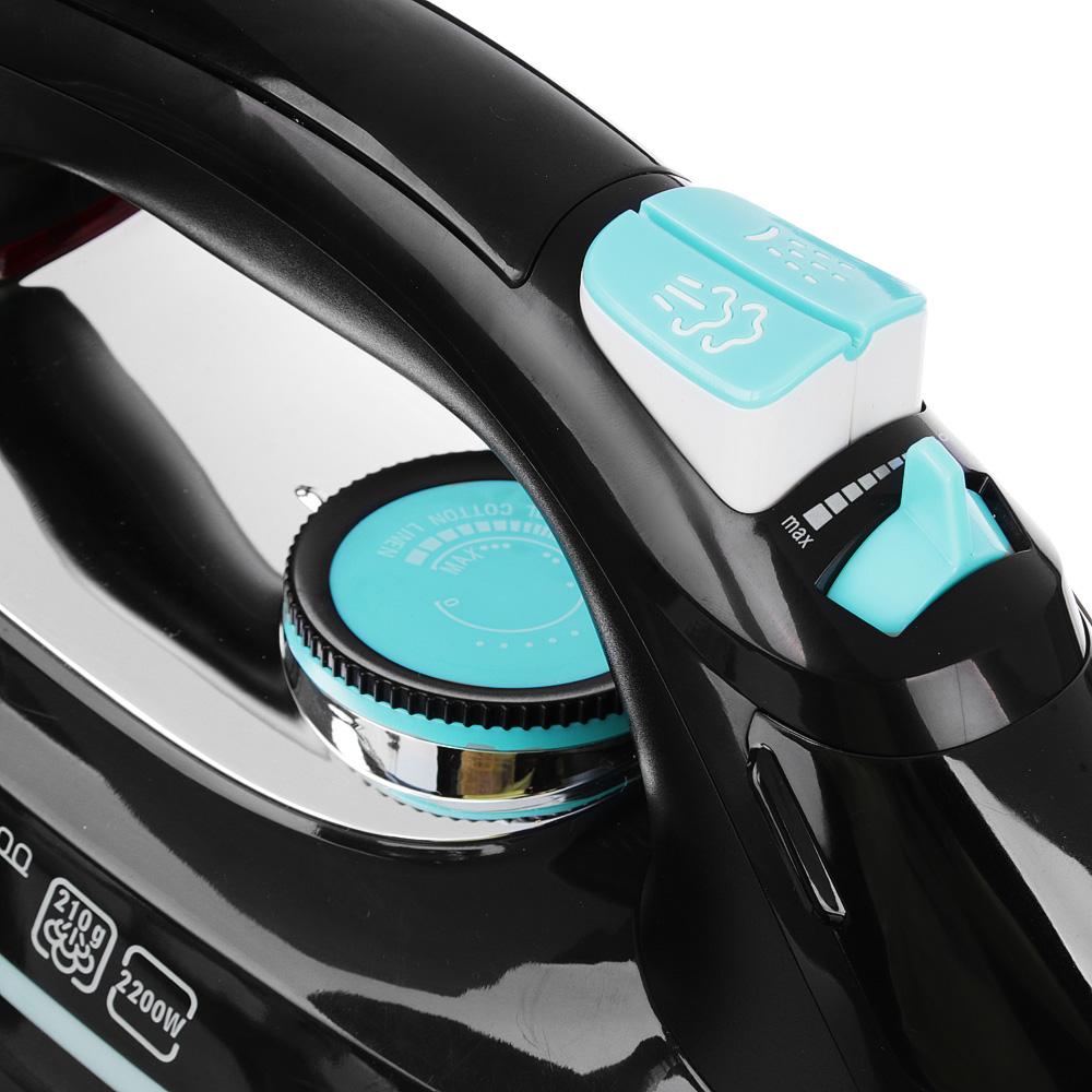 LEBEN Утюг с отпаривателем 2 200 Вт, подошва - керамическое покрытие, черный