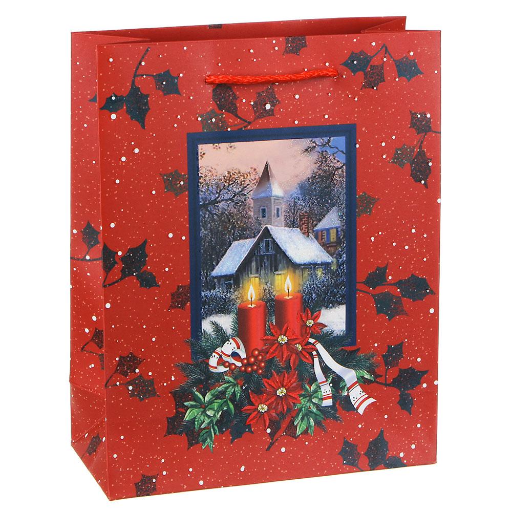 Пакет подарочный СНОУ БУМ  23х18х8 см, бумага высокого качества с блеском, 3 дизайна, арт 25