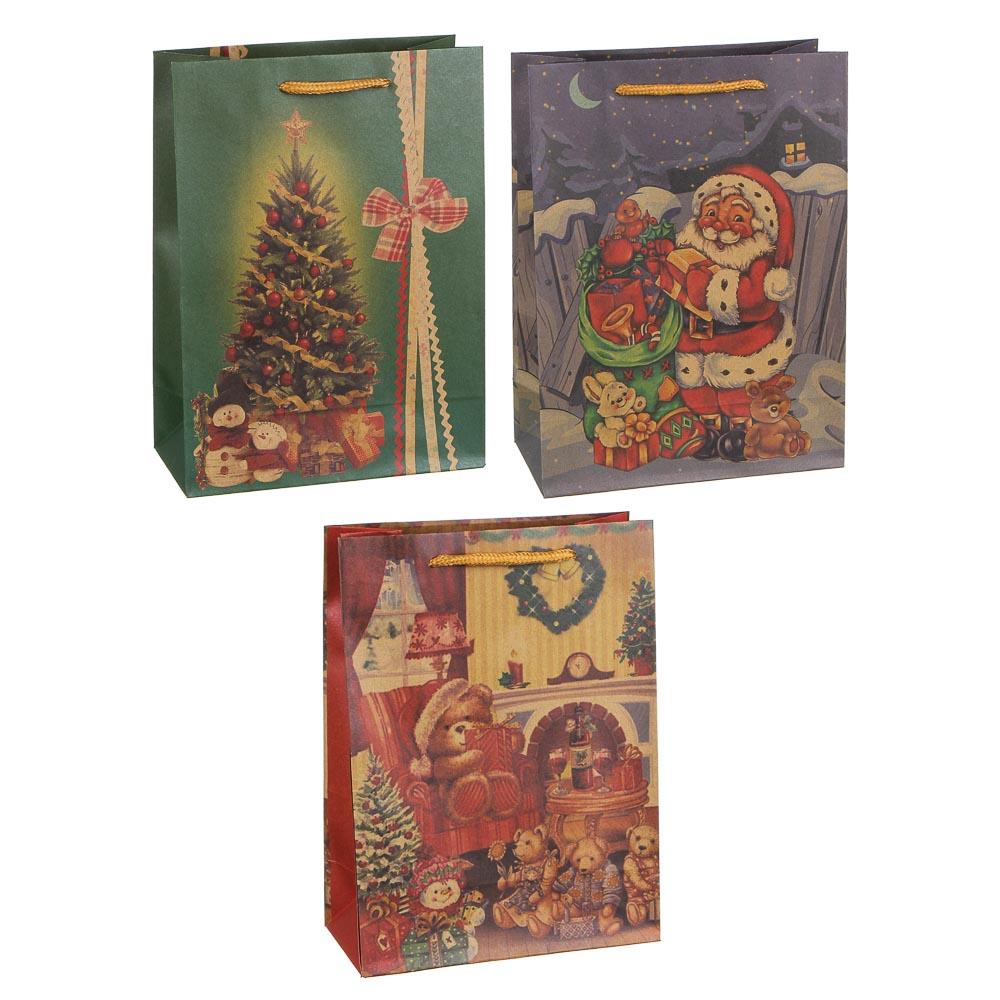 Пакет подарочный СНОУ БУМ бумажный, крафт с рисунком, 18х24х8,5 см, 3 дизайна, арт 2