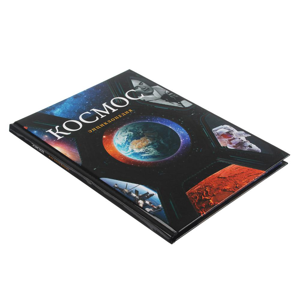 Энциклопедия, 96 страниц, бумага, картон, 16,5х22см, 2-4 вида