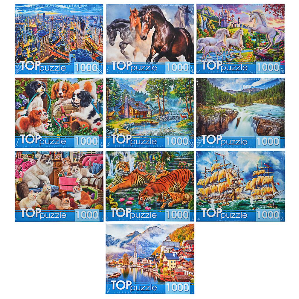РЫЖИЙ КОТ Пазлы TOPpuzzle, 1000 деталей, картон, 19х15x6,7см, 10 дизайнов