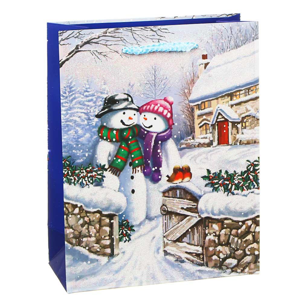 СНОУ БУМ Пакет подарочный, 18х23х8см, бумага высокого качества, глиттер, 6-12 дизайнов, арт.2021-5
