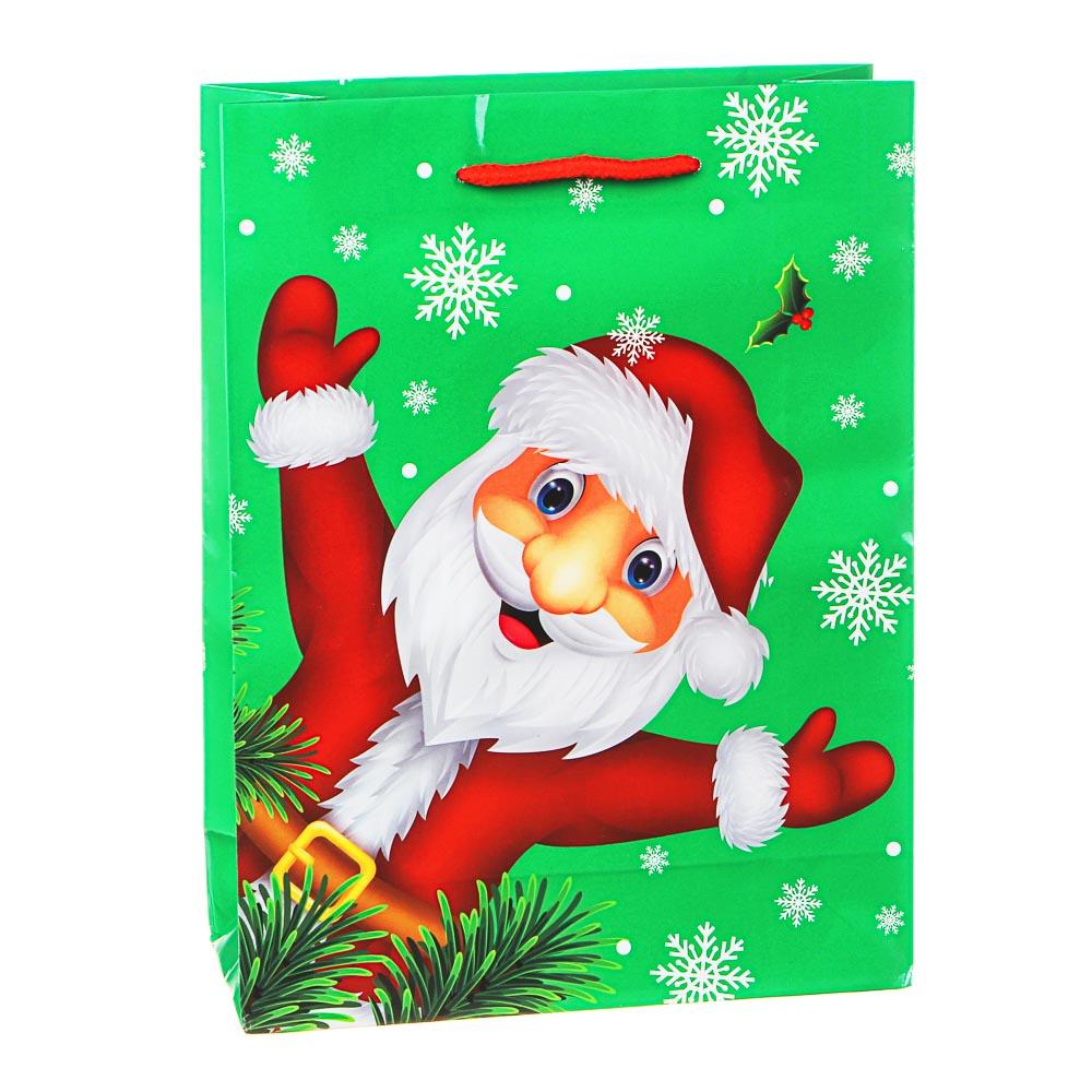 СНОУ БУМ Пакет подарочный, 24х18х7см, бумага, 8 дизайнов, арт.2021-18