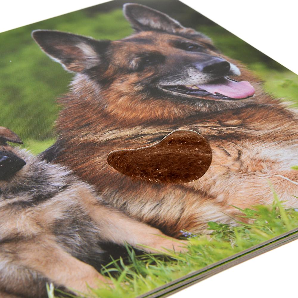 УМКА Книжка-картонка с тактилом, 6-8 стр., картон, 12х12см, 8 дизайнов