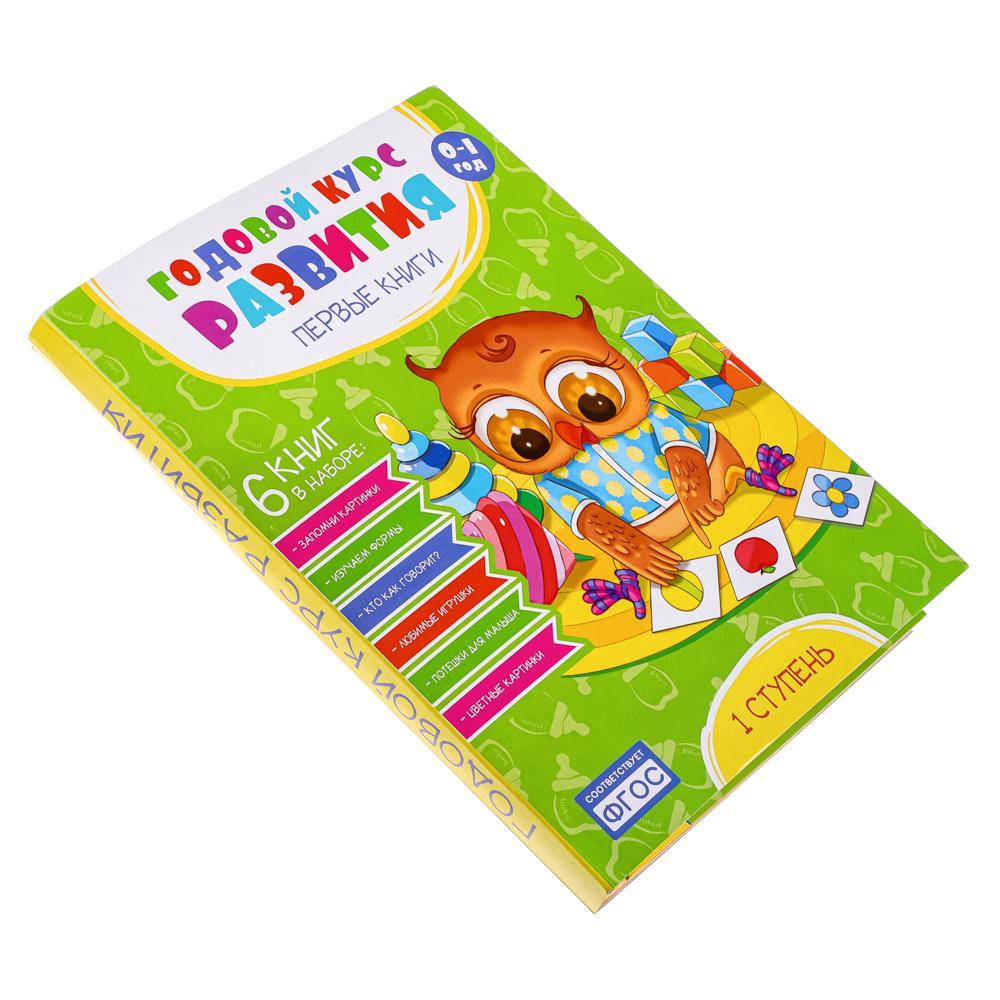 """Набор книг Годовой курс развития """"Первые книжки"""" 6 книг, бумага, картон, 14х21см, 3 дизайна"""