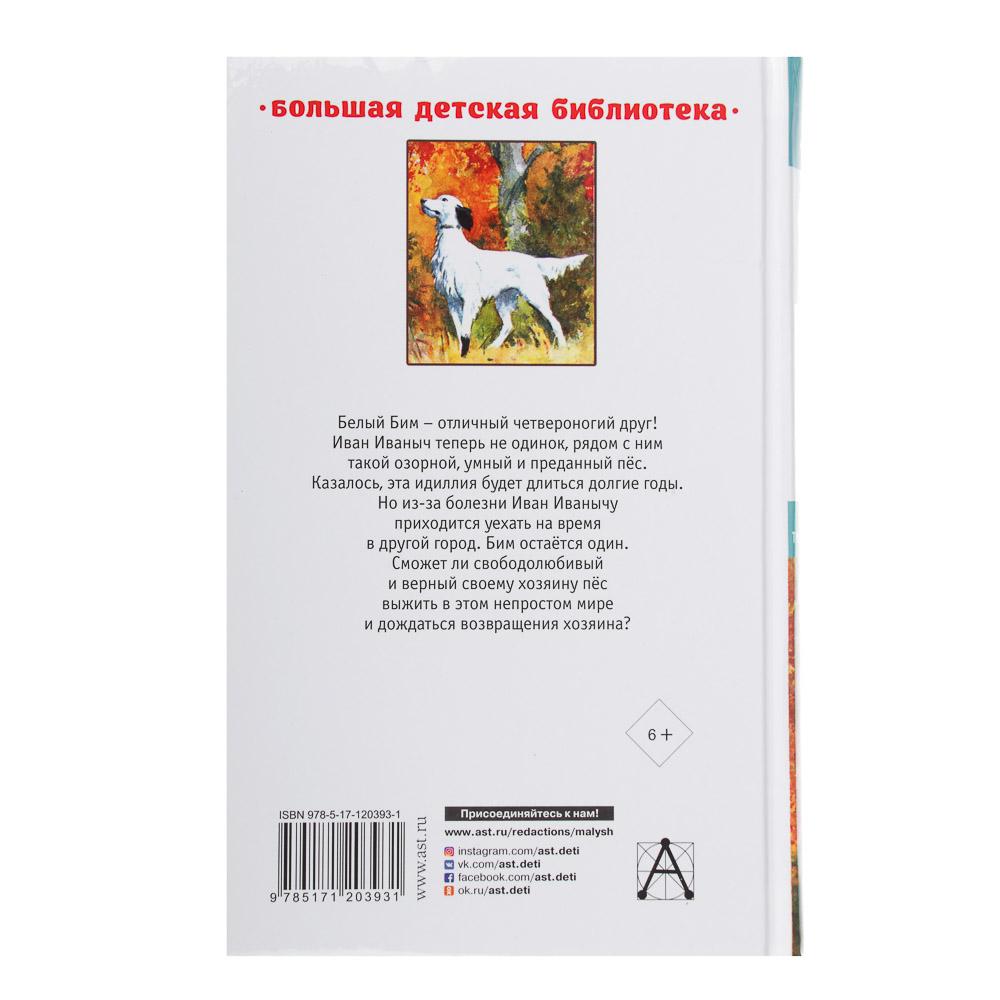 """АСТ Книга """"Большая детская библиотека"""", бумага, 352 стр., 13х20,5см, 4 дизайна"""