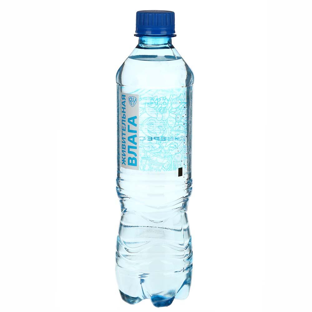 BY Вода питьевая негазированная 0,5 л