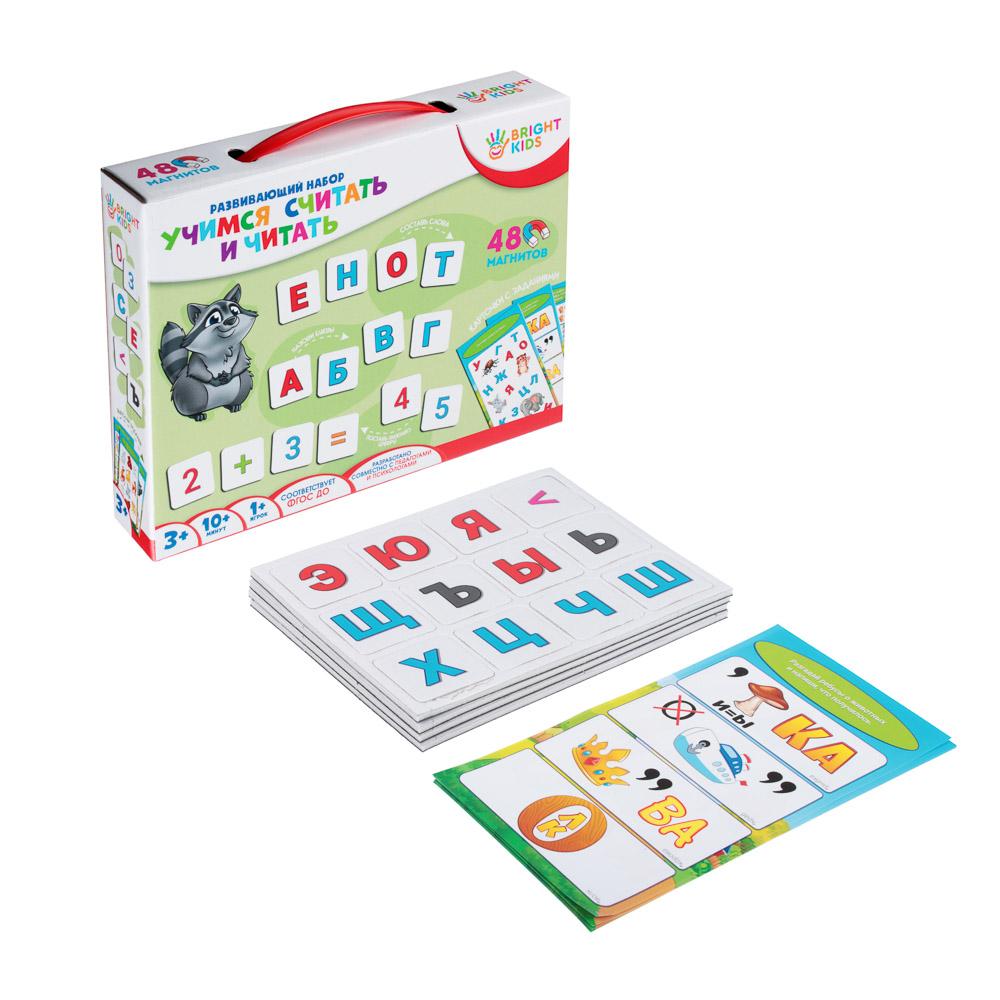 РЫЖИЙ КОТ BRIGHT KIDS Набор на магнитах развивающий Первые знания, картон, винил, 3 дизайна