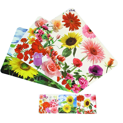 """890-051 Набор термосалфеток 8шт (4шт 42x28см + 4шт 9x9см), ПВХ, """"Цветы"""", 3 дизайна"""