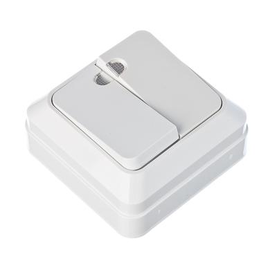 905-007 FORZA Simple Выключатель двухклавишный с подсветкой белый, накладной 10А, 250В, пластик ABS