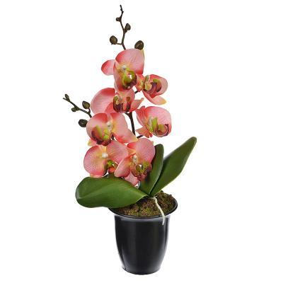 """501-251 Цветы в горшке """"В виде Орхидеи"""" 23см, пластик, силикон, 8 цветов"""
