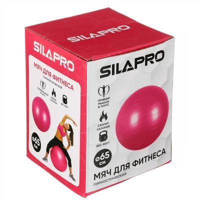 193-003 Мяч для фитнеса гимнастический, ПВХ, 65 см, 800 гр, 6 цветов, в коробке, SILAPRO