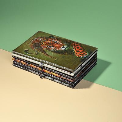 334-017 Обложка для паспорта с удерж.резинкой, с отд. для вод.удост, ПВХ, 13,7х9,6х0,4см, 2015-9, Дизайн GC
