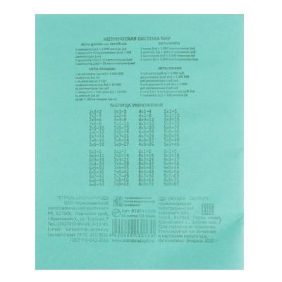526-345 Тетрадь школьная 18л. в клетку, БЕЛЫЕ ЛИСТЫ, зеленая обл., скрепка
