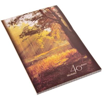 "526-356 Блокнот 40 л., А5, клетка, сшивка, картон.обл. Альт, ""Природа"", 4 дизайна, арт.30-40-499Д"