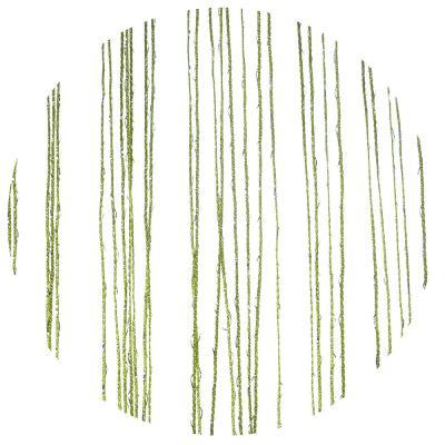 491-365 Занавеска нитяная, с блестками, полиэстер, 1x2м, зеленый, 214