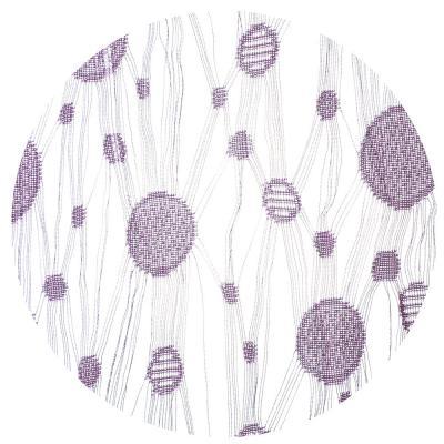 497-002 Занавеска нитяная межкомнатная, полиэстер, 1х2м, 5 цветов, «Круги»