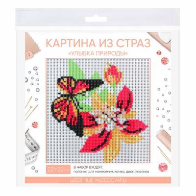 """366-190 Картина из страз, 22х22см, полотно, стекло, стик, """"Улыбка природы"""", 5 дизайнов"""