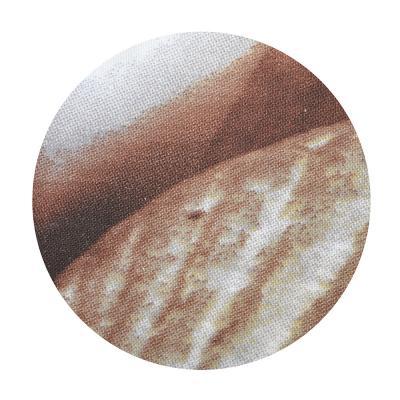 "461-455 VETTA Шторка для ванной, ткань полиэстер с утяжелит, 180x180см, ""Ракушки"", Дизайн GC"