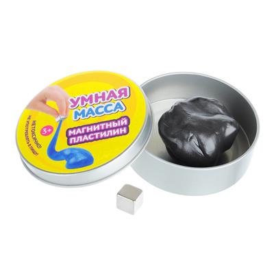 218-005 Умная масса Магнитный пластилин (магнит в комплекте), полимер, 58-60гр