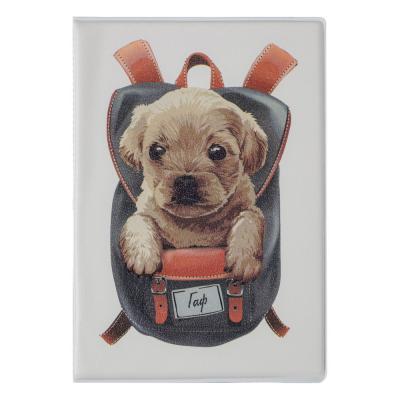 334-098 PAVO Обложка для паспорта с отд.для карт, ПВХ, 13,7х9,6см, 2-6 дизайнов, DC2018-2