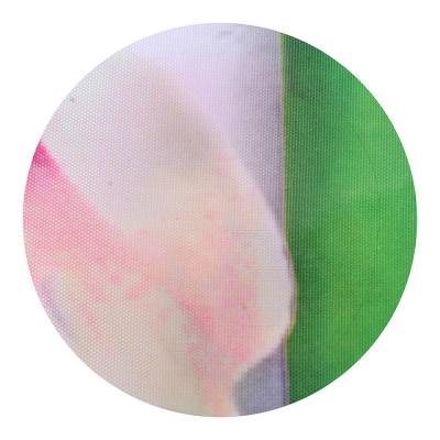 461-479 VETTA Шторка для ванной, ткань полиэстер с утяжелит, 180x180см, фотопечать эконом, Бамбук