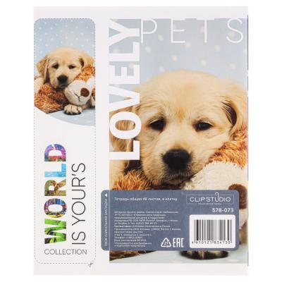 578-002 Тетрадь общая ClipStudio 48 листов в клетку, 10 дизайнов