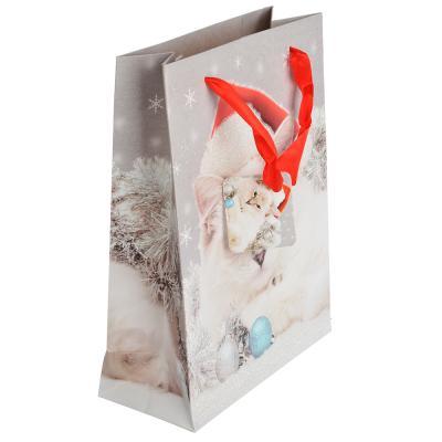 369-341 СНОУ БУМ Пакет подарочный, 18х24х8 см, бумага высокого качества с глиттером, 8 дизайнов, арт.0323