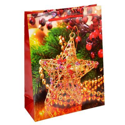 369-348 СНОУ БУМ Пакет подарочный,18х24х7 см, бумага, 4 вида, арт.0330