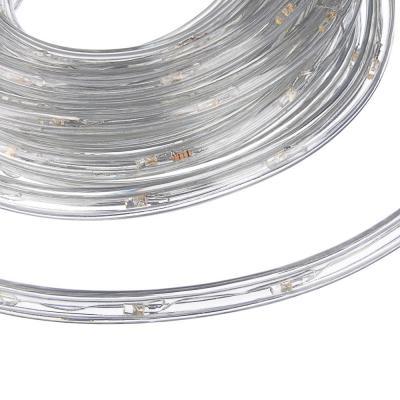 383-011 Светодиодный шнур СНОУ БУМ 6м, 24LED/m, 2 дорожки, 8 режимов, шампань, 220В