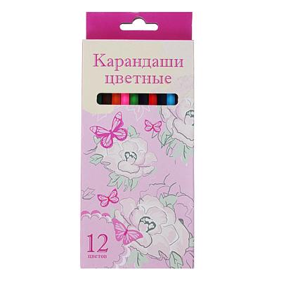 228-078 Карандаши Джуниор гардент 12 цветов, шестигранные заточенные