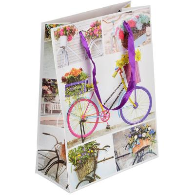 507-988 Пакет подарочный, высококачественная бумага, 18х24х8,5 см, 4 цвета, летний