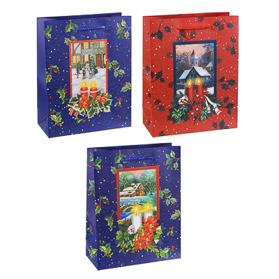 369-369 Пакет подарочный СНОУ БУМ  23х18х8 см, бумага высокого качества с блеском, 3 дизайна, арт 25