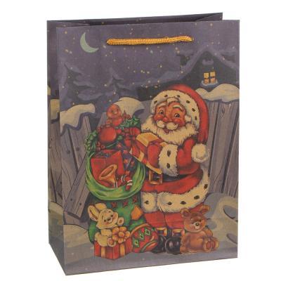 369-399 Пакет подарочный СНОУ БУМ бумажный, крафт с рисунком, 18х24х8,5 см, 3 дизайна, арт 2