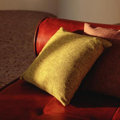 "497-033 Наволочка декоративная PROVANCE ""Акцент"" 40х40см, полиэстер, 4 цвета"