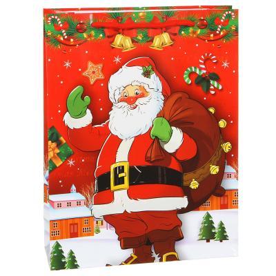 369-416 Пакет подарочный СНОУ БУМ бумажный, 30х23х8 см, 8 дизайнов