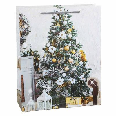 369-437 СНОУ БУМ Пакет подарочный, 26х32х10см, бумага высокого качества с глиттером, 6 дизайнов, арт.2021-11